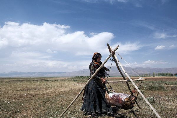 A Photo Essay by: Sardar Farrokhi